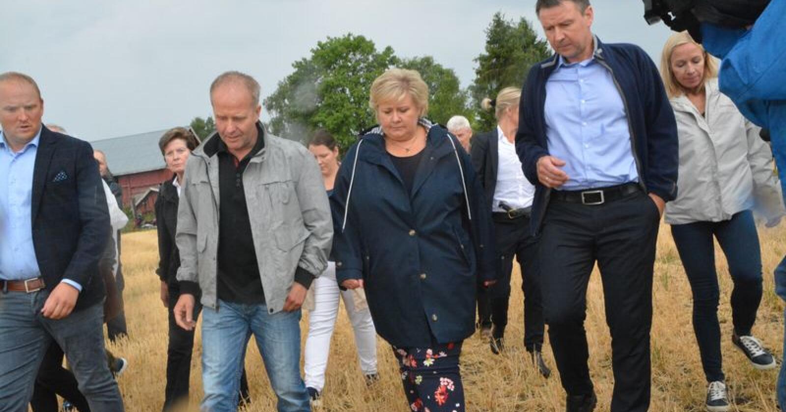 Onsdag møtte statsminister Erna Solberg (H) korn- og melkebonde Lars Egil Lauten på hans gård på Kløfta. Lauten er en av mange kriserammede bønder etter sommerens ekstremtørke og tilhørende fôrkrise. Her er de to flankert av landbruks- og matminister Jon Georg Dale (t.v.) og bondelagsleder Lars Petter Bartnes. Foto: Anders Sandbu