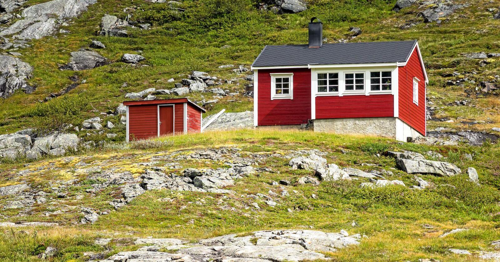 Folk som er isolert på hytta og som oppfører seg normalt klokt, vil ikke bli smittet og vil ikke kunne smitte andre, skriver Jørgen Hoel. Foto: Mostphotos
