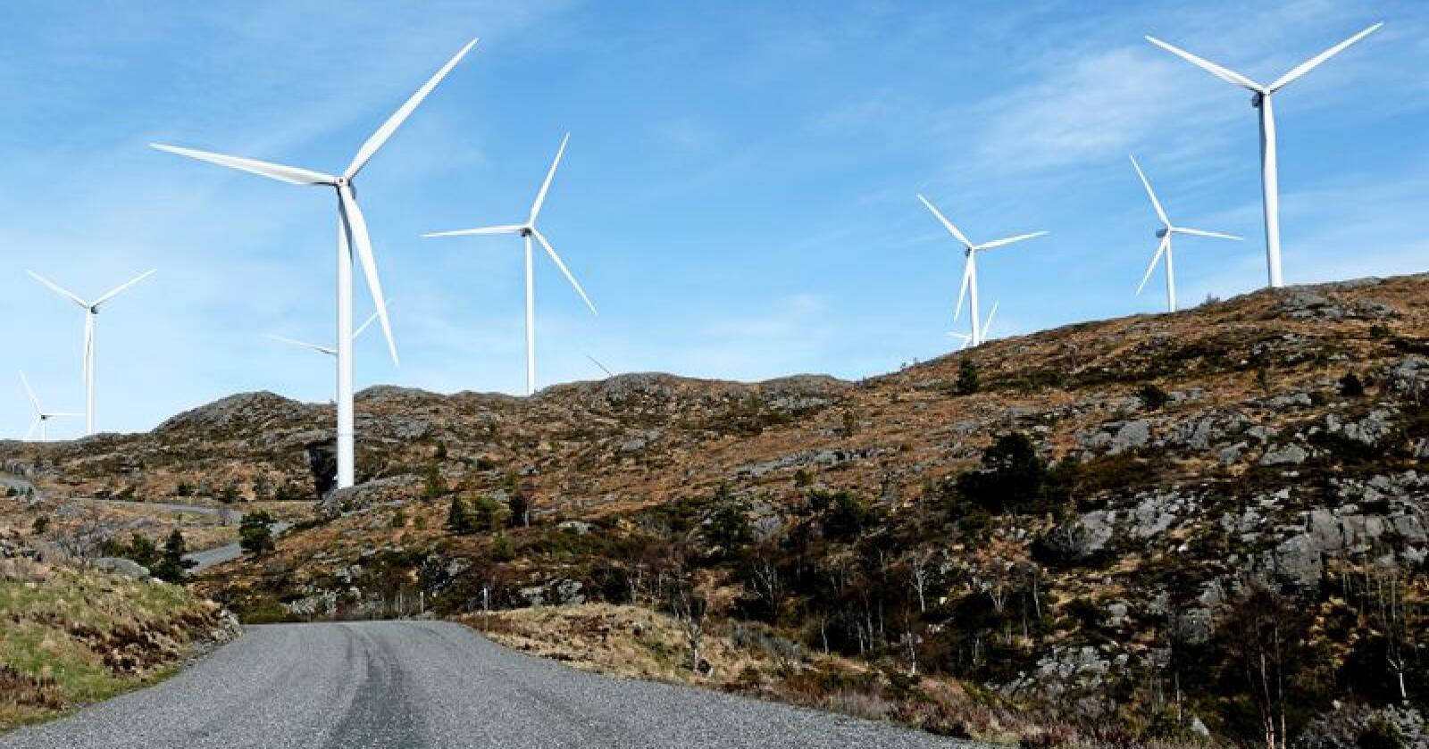 Vindkraft: Noen av vindturbinene i Midtfjellet vindpark i Fitjar kommune. Foto: Jan Kåre Ness/NTB scanpix