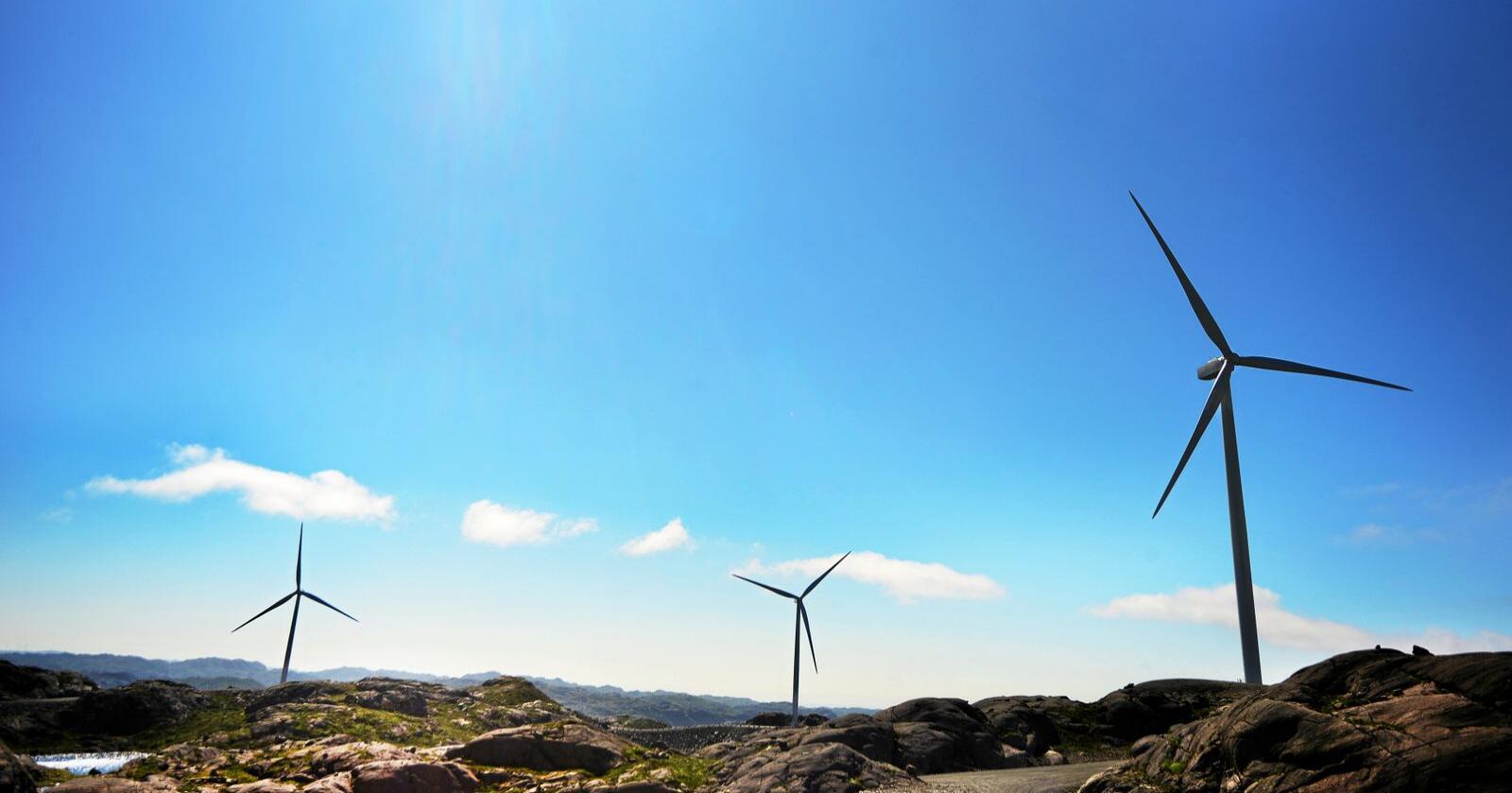 Vindkraft: Norge kan bidra til utfasing av fossilkraft. Foto: Siri Juell Rasmussen