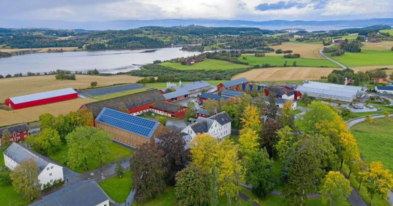 Mange bygg: Mære landbruksskole har et samlet byggeareal på om lag 18.000 kvadratmeter. Alle foto: Håvard Zeiner