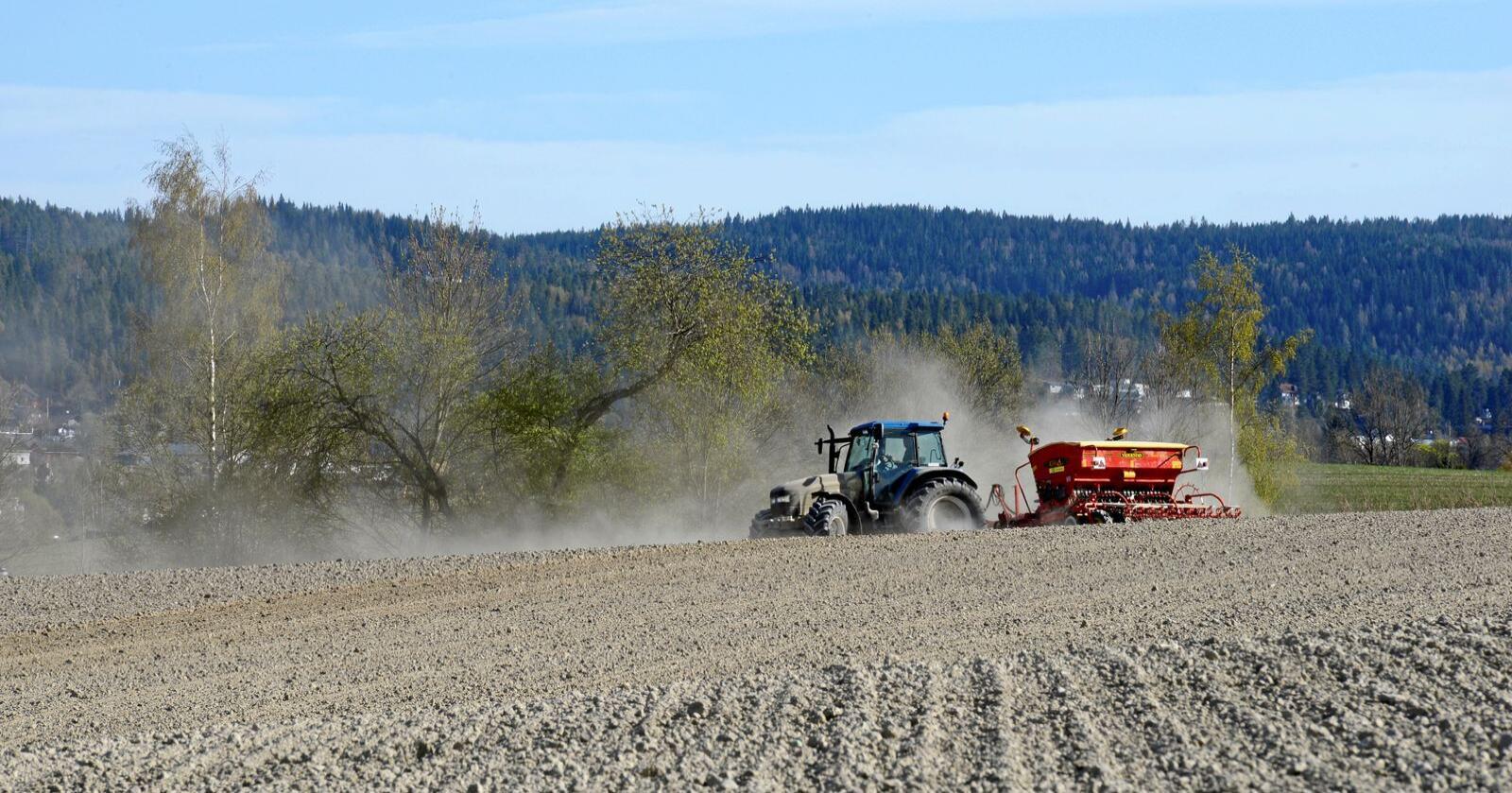 Neste års jordbruksoppgjør vil være rett tidspunkt for å utnytte jordbrukets stigende i kurs i samfunnet, mener Bjørn Iversen. Foto: Mariann Tvete