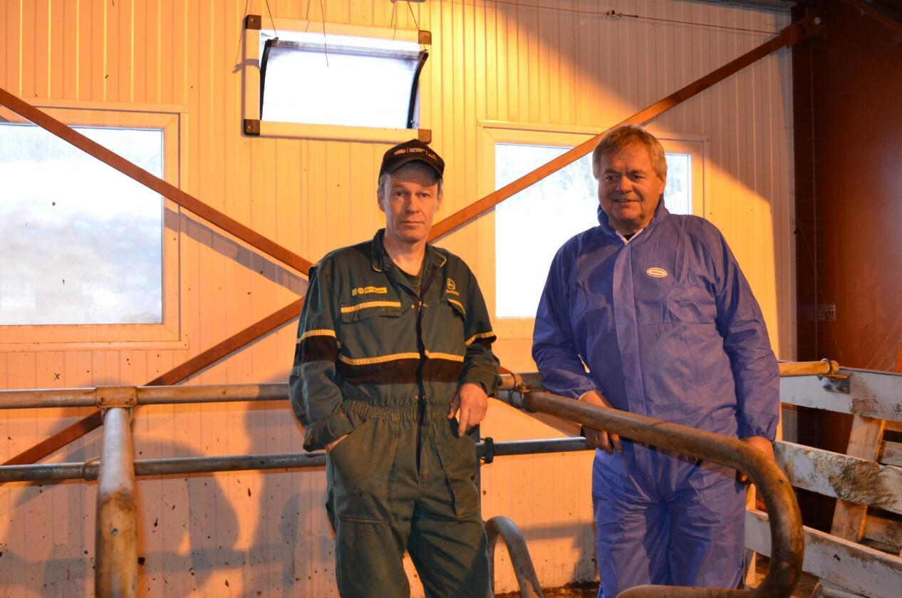 Etterlyser handling: Når tjue prosent av husdyrbøndene sliter med luftveisplager, må noe gjøres, sier jordbrukssjef Torstein Vitsø (til høyre). Han får støtte av bonde Egil Berdal, som sammen med tre andre bønder bygde nytt i fjøs i 2009.