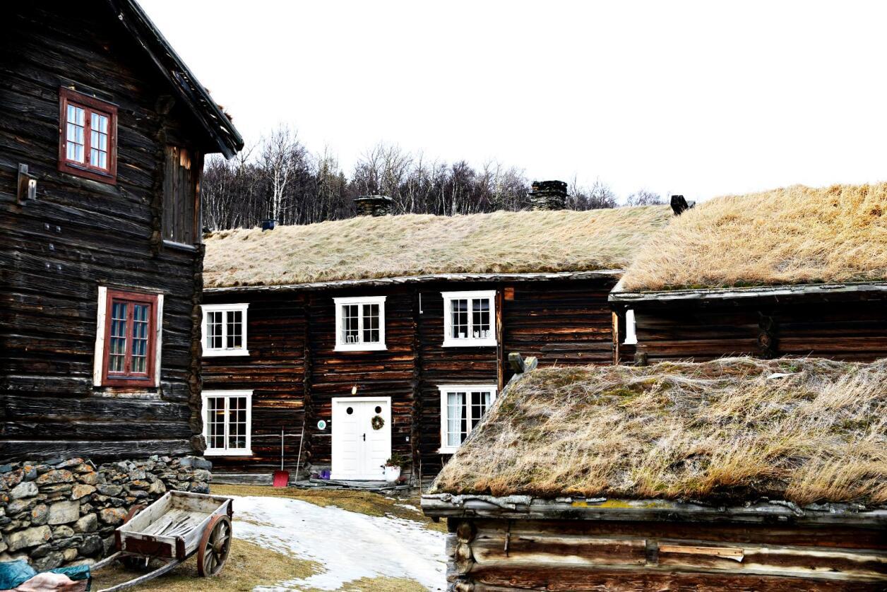 Flyttet: Stabile gårdstun ble ikke etablert før i vikingtiden, skriver kronikøren. Foto: Mariann Tvete.
