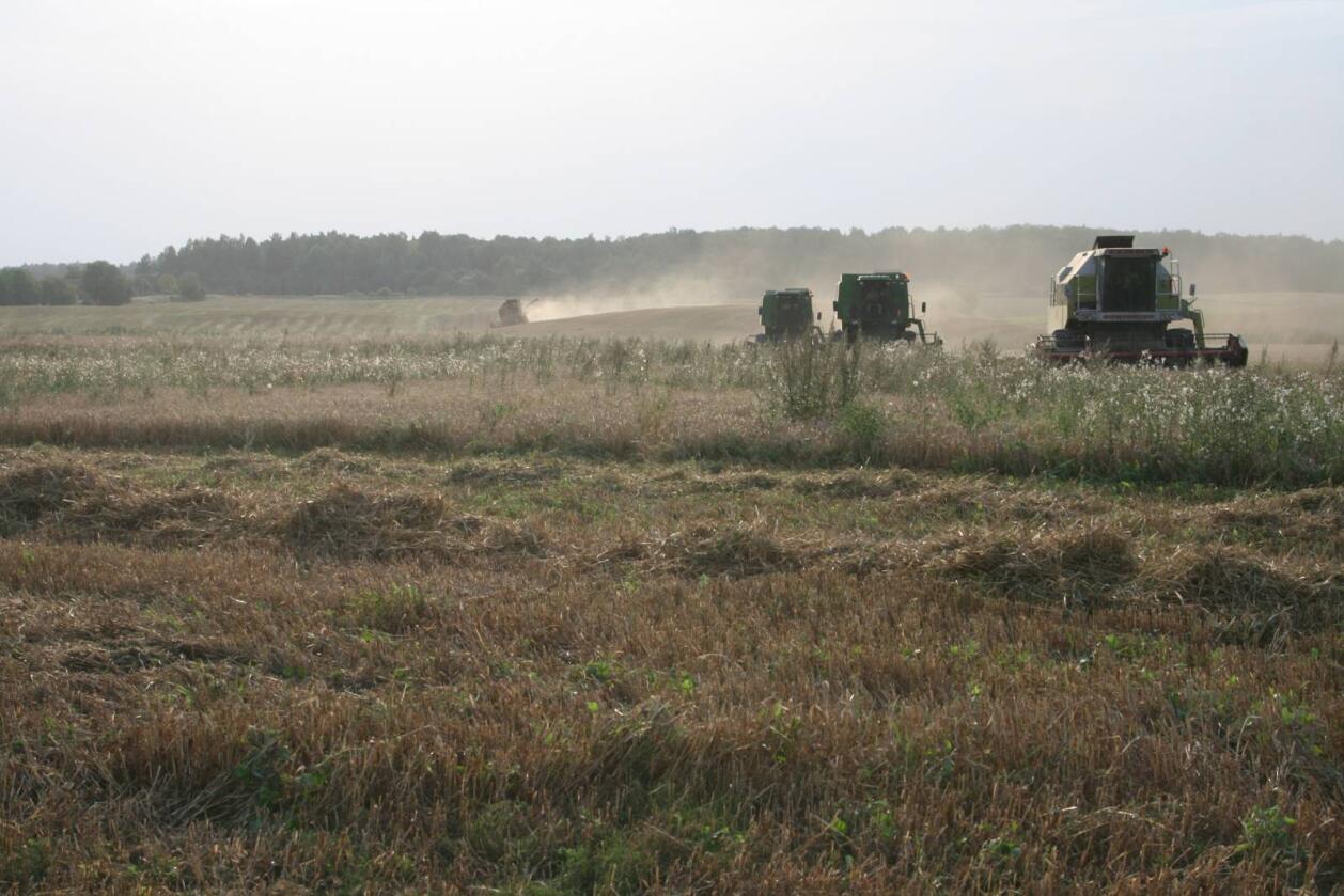 Bondepartiet i Litauen vil beholde forbudet mot salg av jord til utlendinger. Foto: Bjarne Bekkeheien Aase