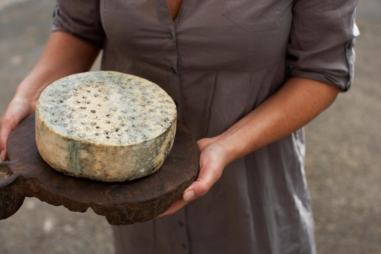 Offisiell: Ingen grunn til ikke å servere klodens beste ost fra Tingvoll til utenlandske gjester, skriver kronikørene.  Foto: Alexander Hagstadius.