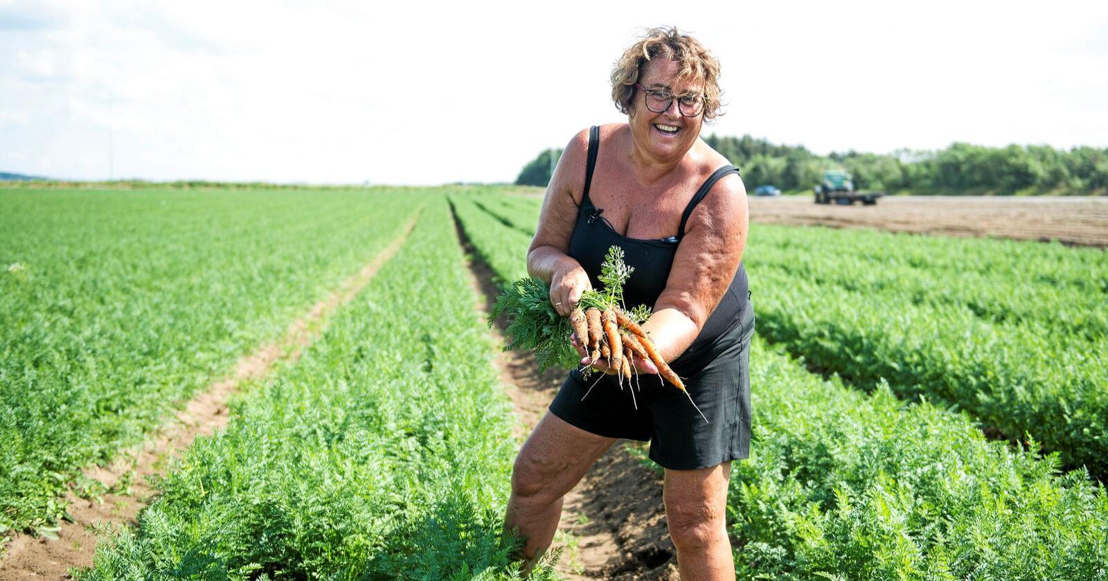 Olaug Bollestad og resten av regjeringen har nå åpnet for at personer på dagpenger kun må melde inn halvparten av timene de jobber i landbruket til NAV.  Foto: Carina Johansen / NTB Scanpix