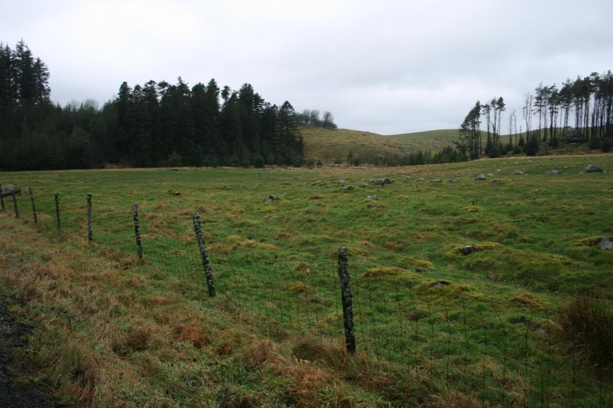 I et jordbruksområde rundt Kverneland, Kalberg og Frøyland i Time på Jæren er det storstilte planer om å bygge ut datalagringssenter. Her fra området nord for Åslandsvegen på Søra Kalberg. Foto: Bjarne Bekkeheien Aase