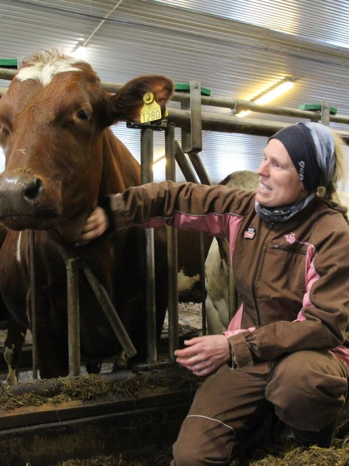 DOKUMENTASJON: Torunn Kvarme Aurstad  synes det er veldig positivt at Tine har utarbeidet et verktøy som kan hjelpe melkeprodusentene med å forbedre velferden i besetninga. Like viktig er det å dokumentere hvordan velferden utvikler seg, mener hun.