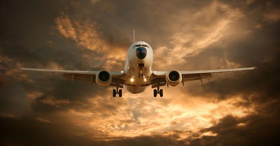 Fra november blir det servert flere luksusoster fra Sønderhaven Gårdmejeri hos Singapore Airlines. (Foto: Mostphotos)