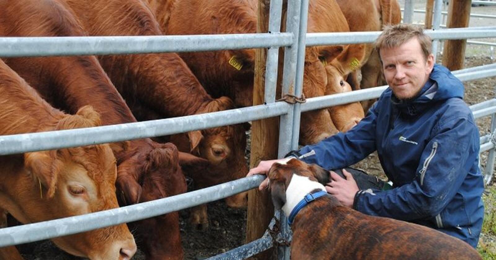 Sivert Mauset driver med ammeku og korn i Surnadal på Nordmøre. Han er forundret over at diskusjonen om styrking av kornøkonomien kun dreier seg om to virkemiddel, arealtilskudd og målpris.