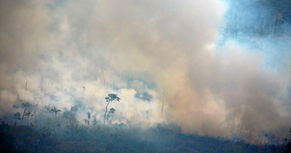 Skogbrannar i nærleiken av Porto Velho i Brasil, 23. august. Foto: Victor R. Caivano / AP / NTB scanpix