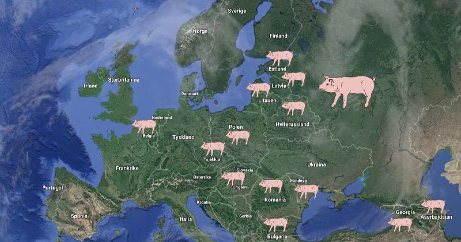 Afrikansk svinepest har kommet til stadig flere land i Europa. Ennå har ikke den fryktede sykdommen rammet Skandinavia. Foto: Google/Maps Illustrasjon Bondebladet