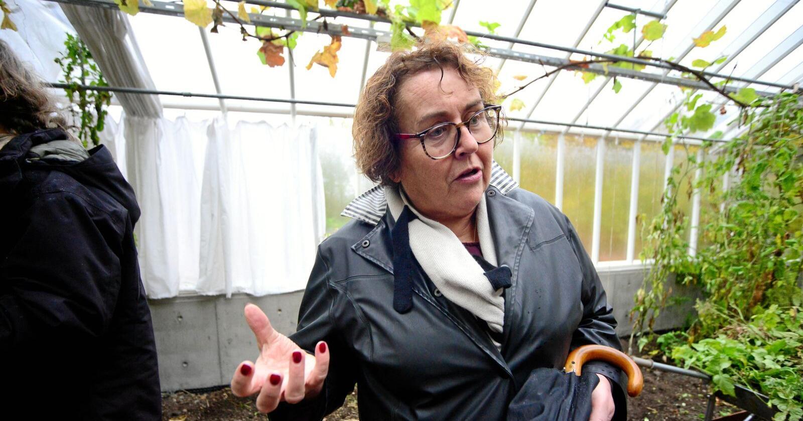 Ministerens tilsløring av sjølforsyningssituasjonen i norsk jordbruk har reelle konsekvenser, skriver Svenn Arne Lie. Foto: Siri Juell Rasmussen