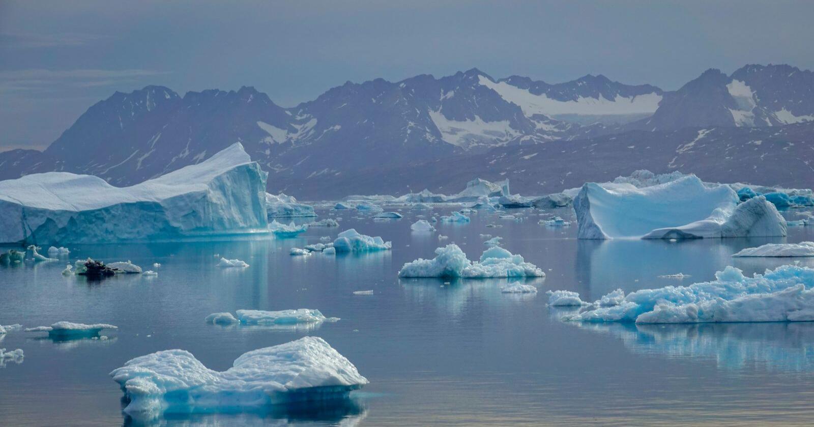 Drivende isfjell i Sermilikfjorden øst på Grønland. Lokalt og regionalt kan klimaet påvirkes av naturlige svingninger, som kommer i tillegg til den langsiktige globale oppvarmingen. Foto: Heiko Junge / NTB