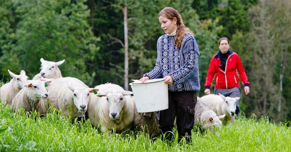 Tar grep: Flere norske bønder må ta grep rundt sin egen sparing. Foto: Landkreditt