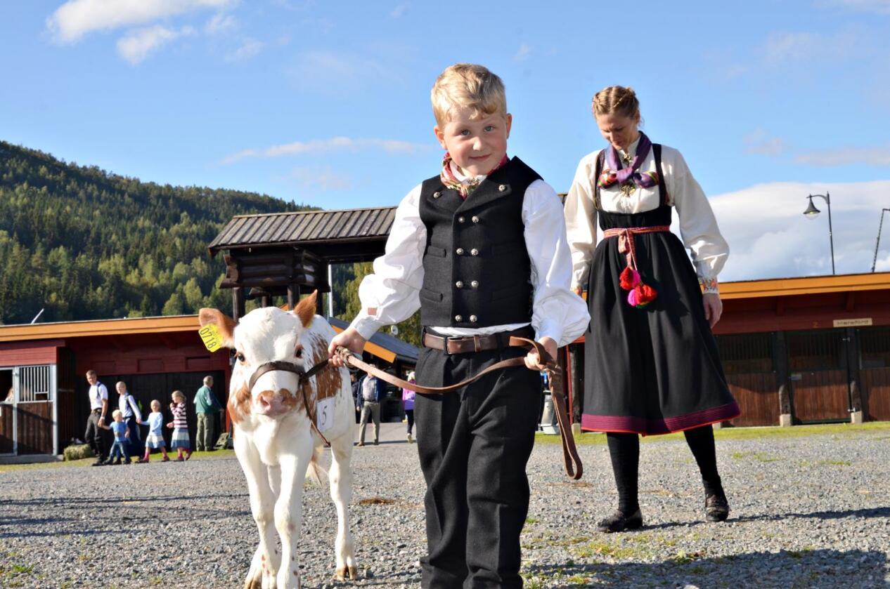 Gisle Snarteland (5) og kalven Nils Frode fra Åmotsdal.