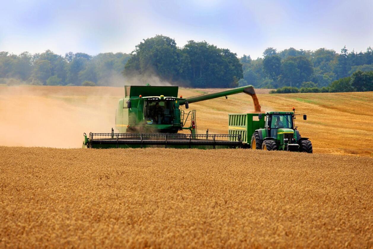 Russland opplever gode tider i kornproduksjonen. Illustrasjonsfoto: Colourbox
