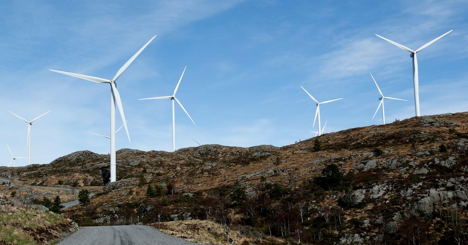 Byggingen av vindkraftparker krever utenlandsk arbeidskraft. Vindkraftbransjen vil derfor ha status som samfunnskritisk virksomhet for å unngå koronareglene. Illustrasjonsfoto: Jan Kåre Ness / NTB scanpix