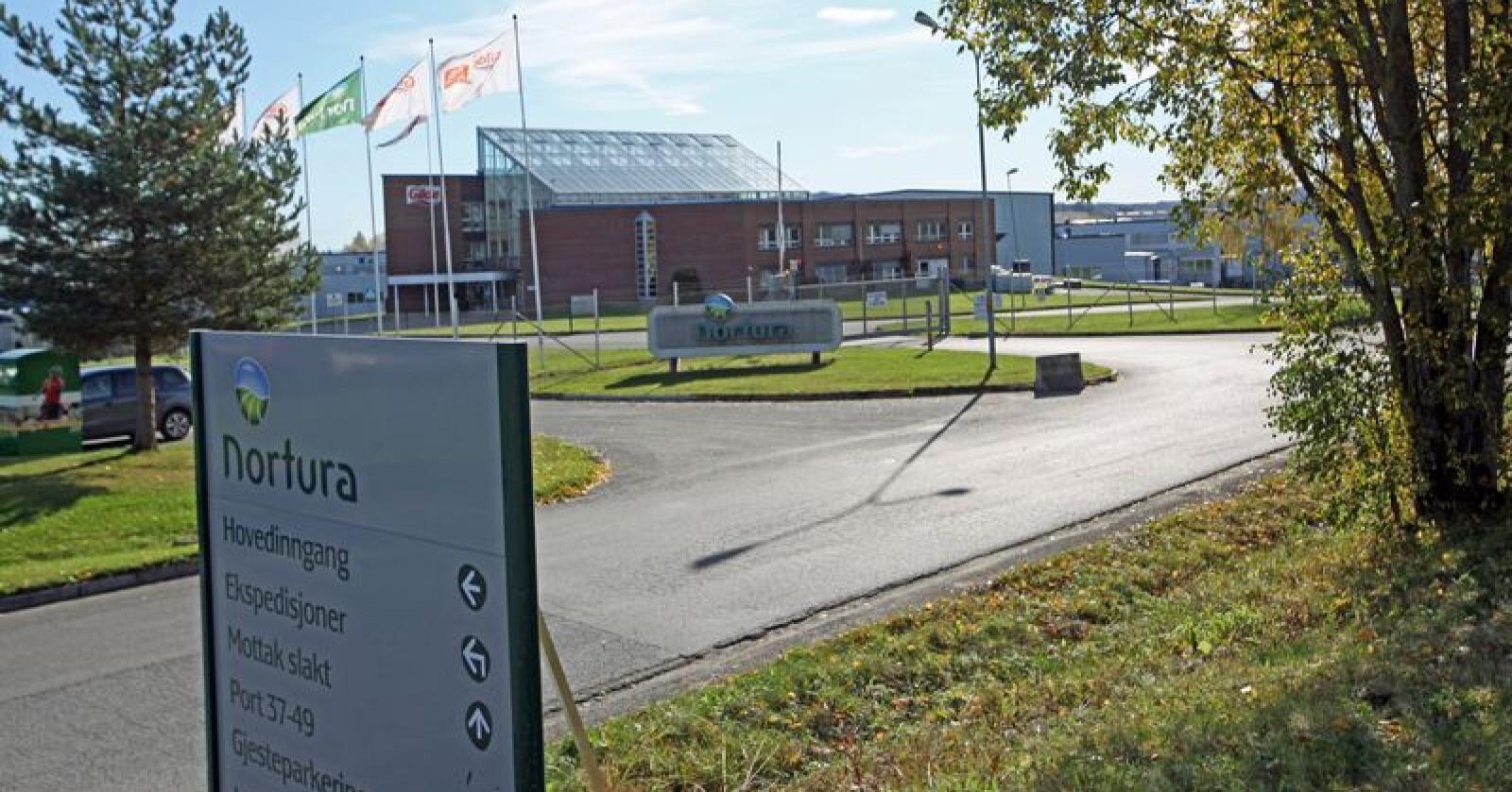 Nortura's anlegg på Rudshøgda er nabo med Oplandske Bioenergi's nye biokullsatsing.Foto: Stian Eide.