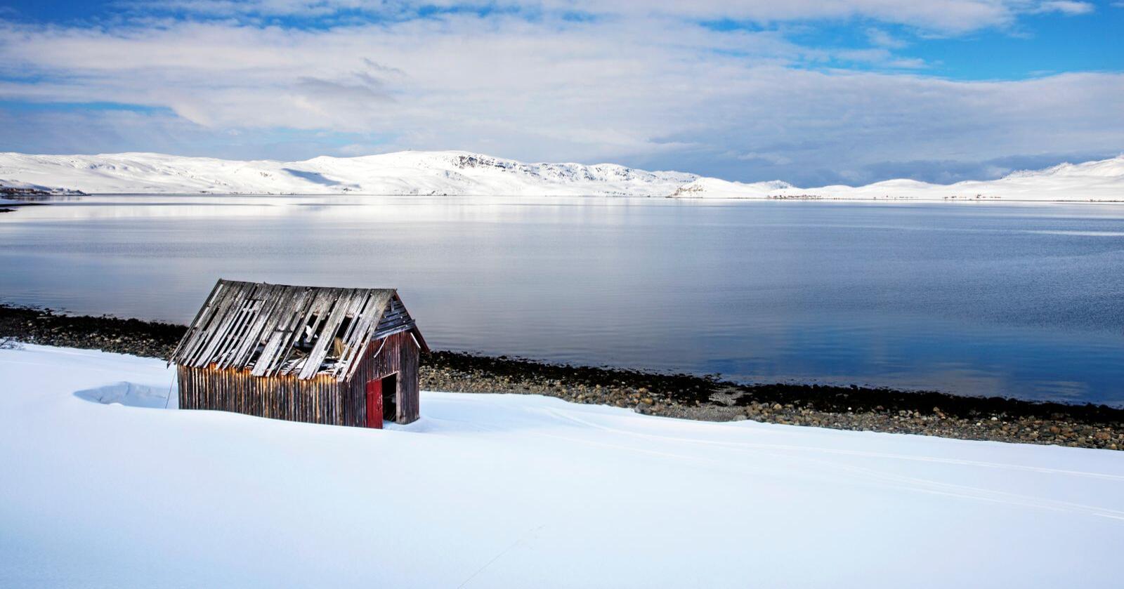 Viktig gyteområde for fisk: Repparfjorden. Foto: Ole Berg-Rusten / NTB Scanpix