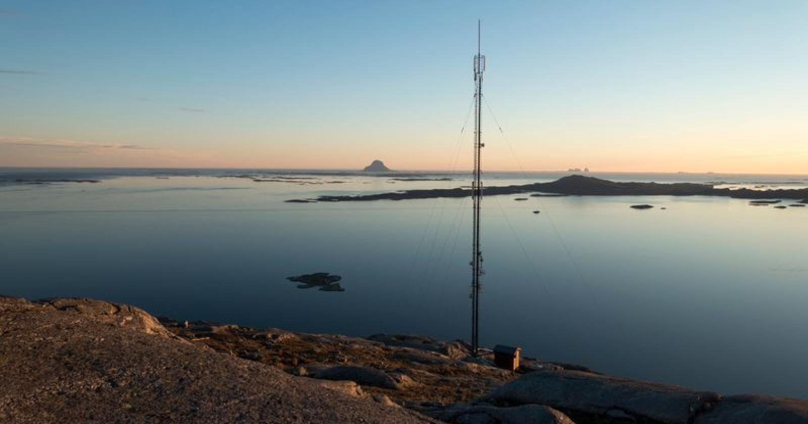 Vi trenger god mobildekning når fasttelefontilbudet fases ut, skriver Birger Bull i Troms Bonde- og Småbrukarlag. Foto: Gorm Kallestad / NTB scanpix