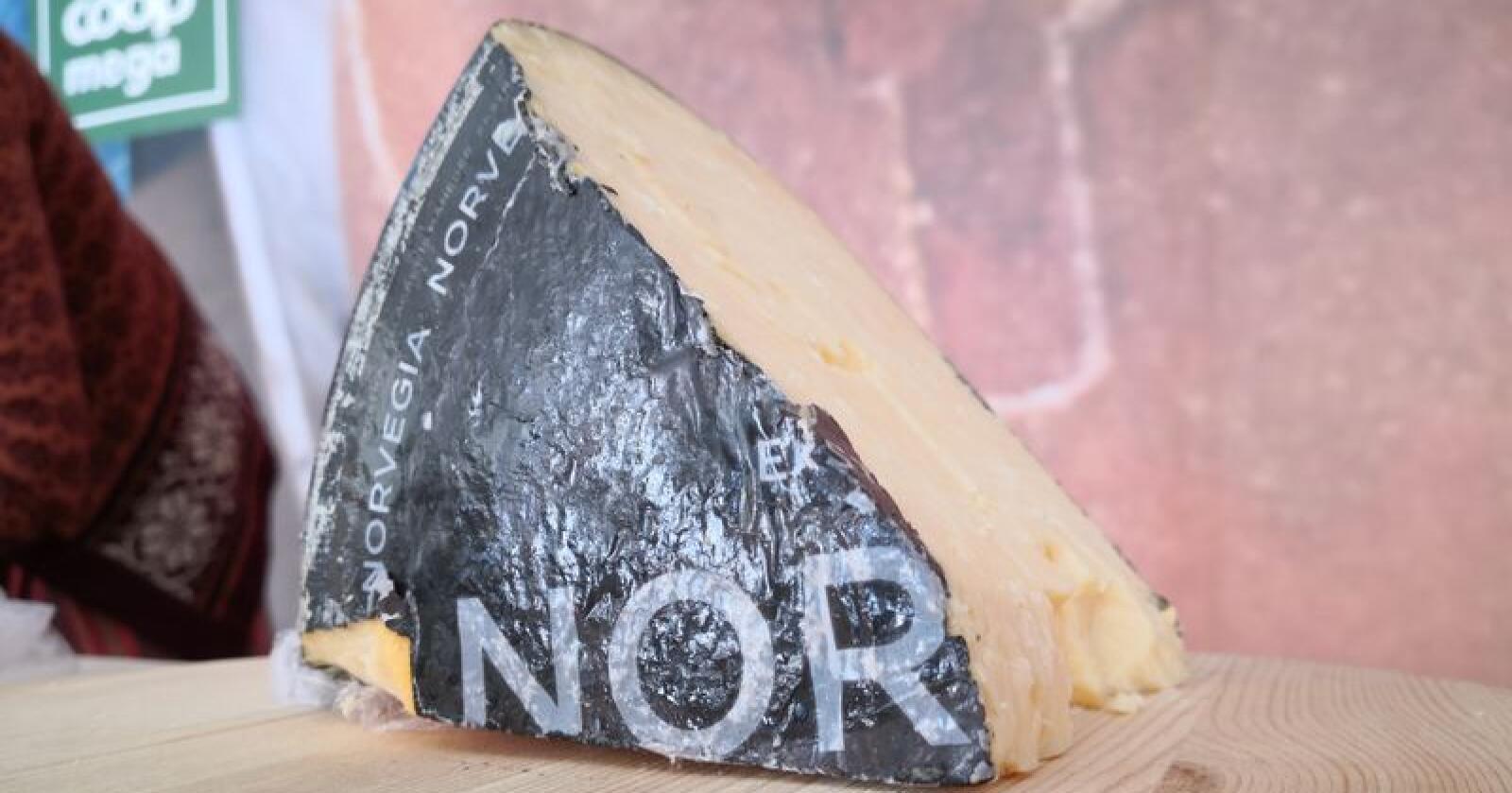 """Tines """"Norvegia Vellagret 5 år"""" gikk helt til topps med 91 av 100 mulige poeng. Ostene vurderes ut fra lukt, smak og konsistens. Foto: Jon-Fredrik Klausen"""