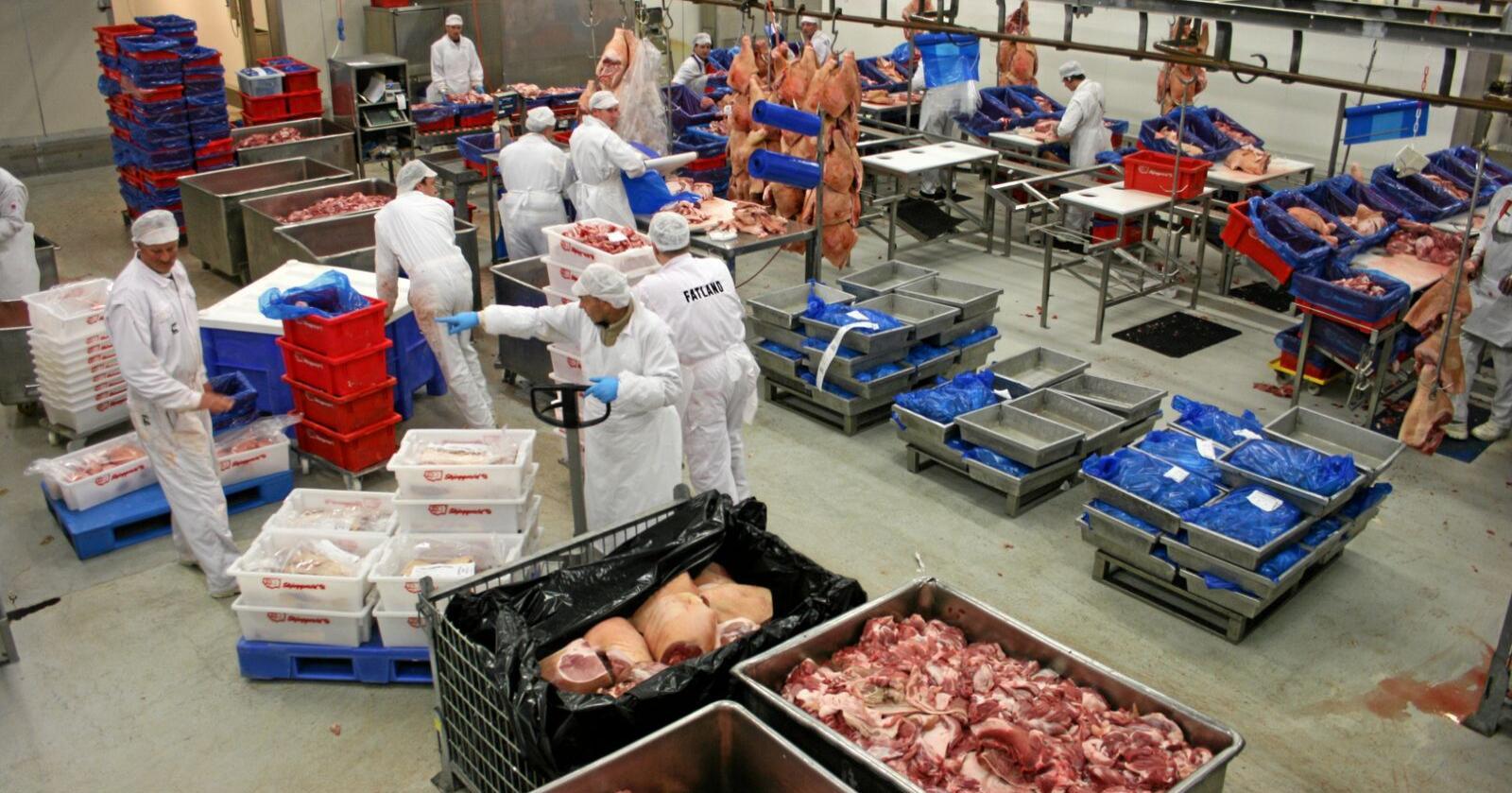 Mottaksplikt: Forslaget om å pålegge Nortura dobbel mottaksplikt på kjøtt får støtte frå Fatland, som er den største slakteri-konkurrenten til Nortura. Her frå slakteriet til Fatland ved Ølen i Rogaland. Foto: Bjarne Bekkeheien Aase