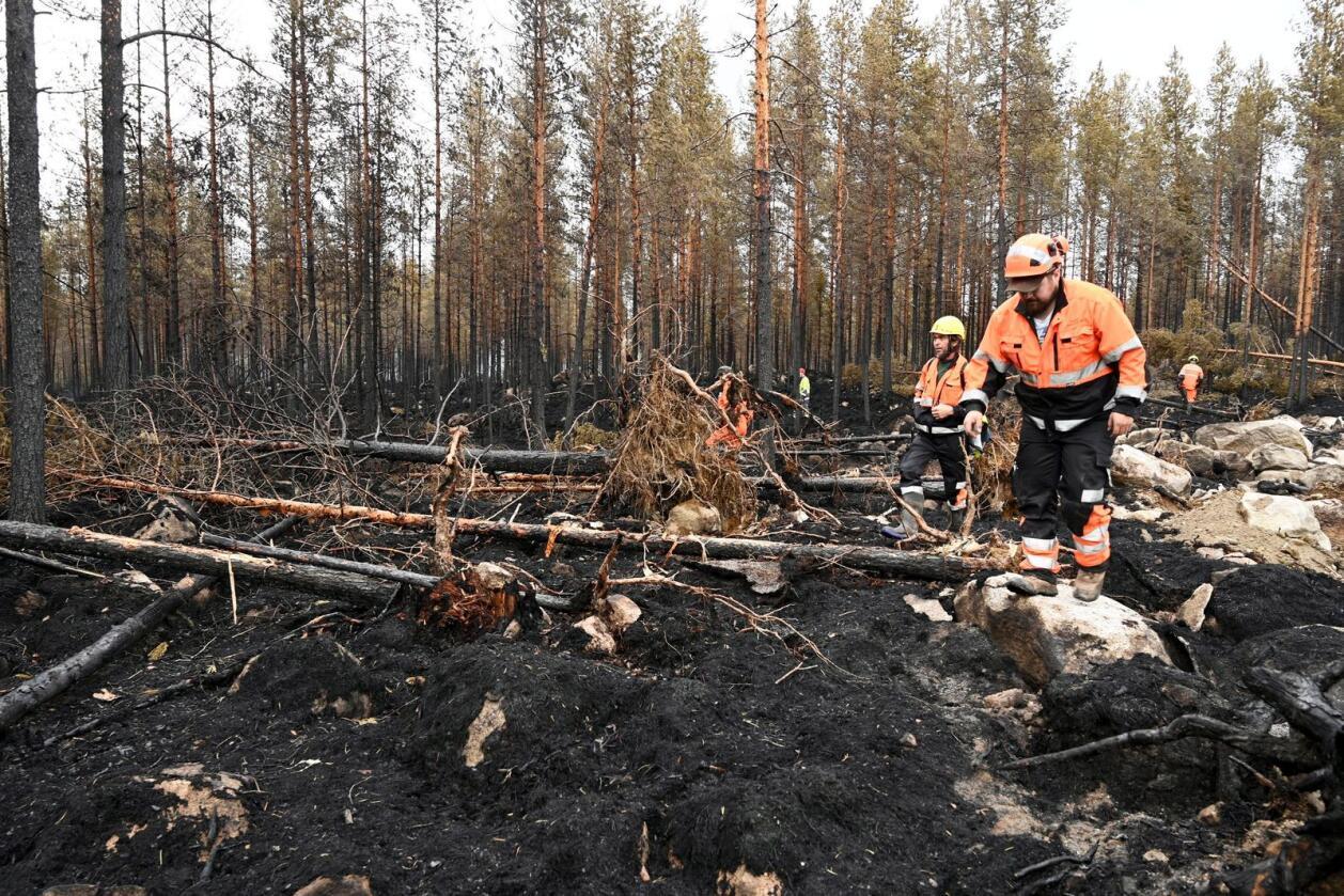 Brannmenn forsøker å slokke brannen i Kalajoki i Norra Österbotten. Foto: Aki Paavola/Lehtikuva via AP