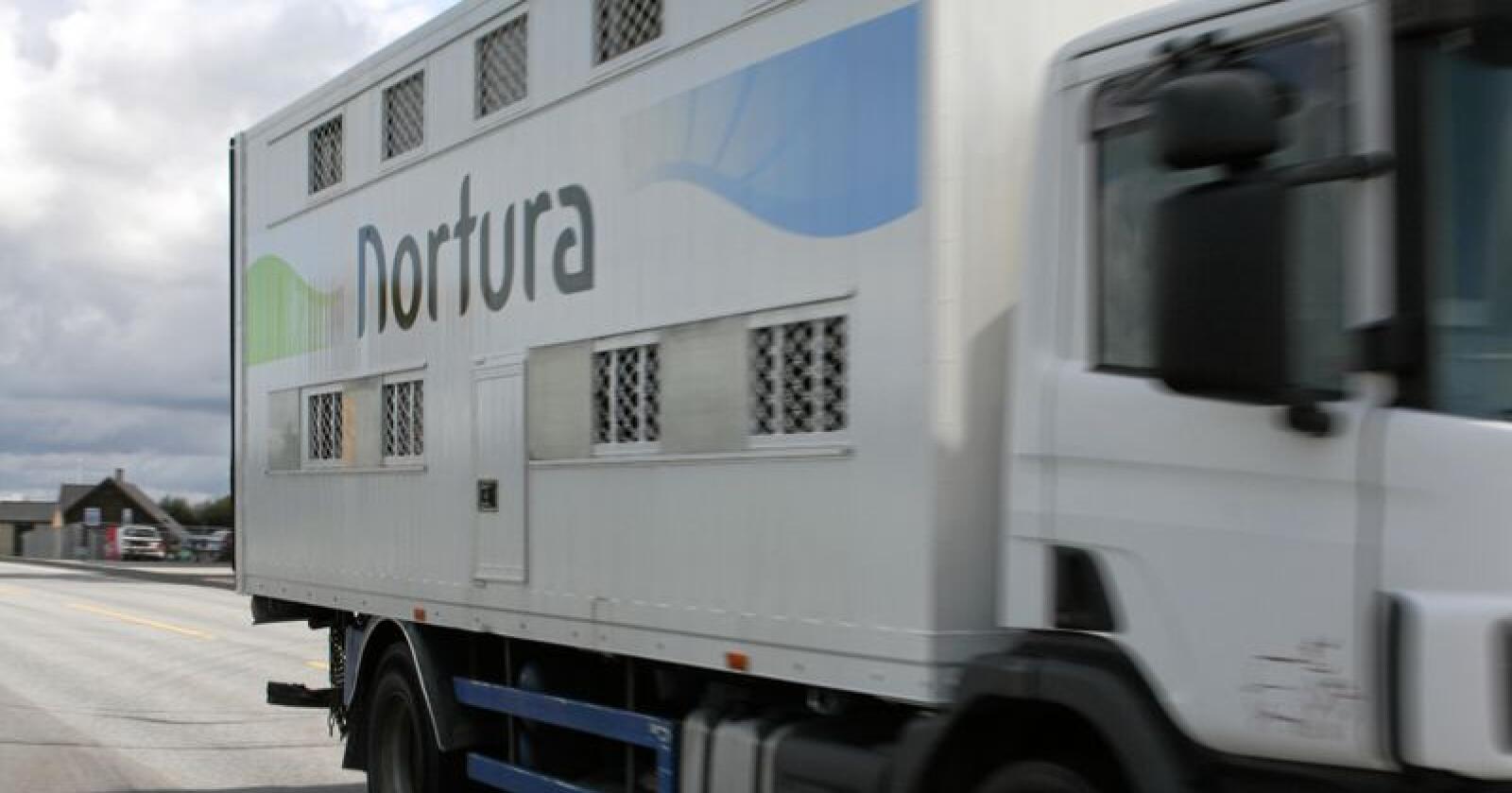Nortura har sammen med transportselskapet Litra dannet et nytt transportselskap som skal transportere dyr til slakteri. Foto: Bjarne Bekkenheien Aase