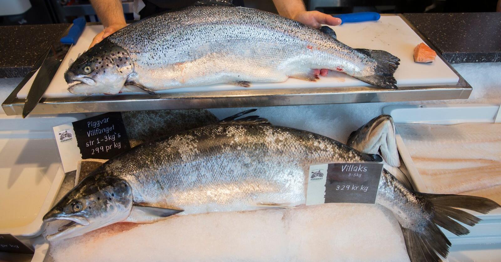 Norsk sjømat møter strengere krav til dokumentasjon fra Kina som frykter spredning av koronasmitte via mat som skal serveres ubearbeidet. Foto: Berit Roald/NTB scanpix