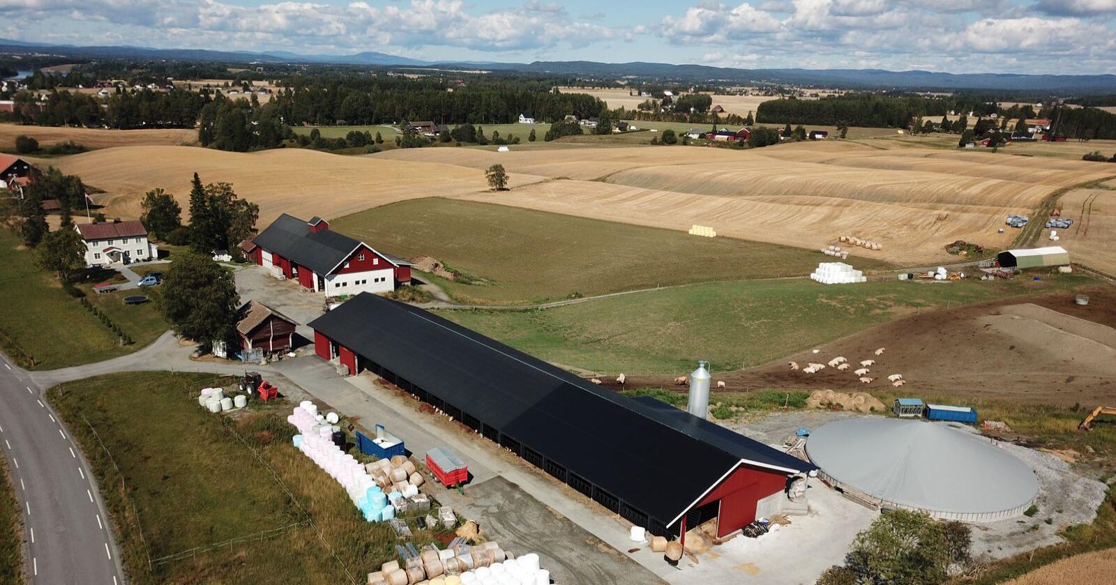 Bildet er fra Øvre Hunstad gård som har ammeku. Knut Berg tegnet driftsbygningen i 2007 og forlengelse i 2015. Foto: Privat