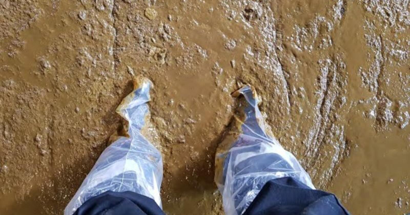 Mattilsynets inspektører hadde møkk til anklene da de var på et tilsyn på en gård for noen år siden. Foto: Mattilsynet