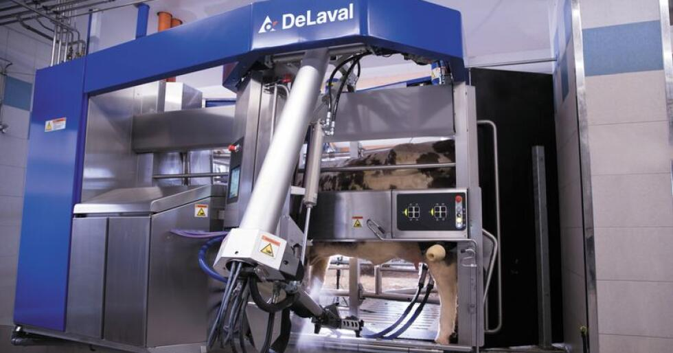 ANALYSERER: Den nye roboten fra Delaval kan nå oppdage om kua er brunstig eller dreiktig mens den står i melkeroboten.