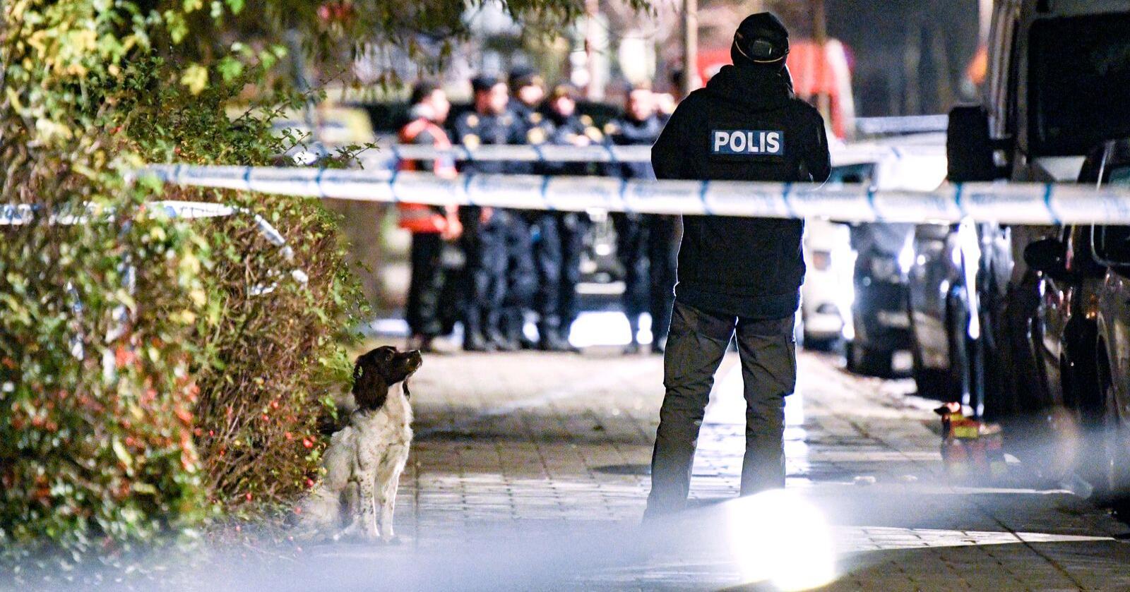Ein ny rapport peiker på politireforma som ein av grunnane til auken i gjengkriminalitet i nabolandet.Foto: Johan Nilsson/TT / NTB scanpix