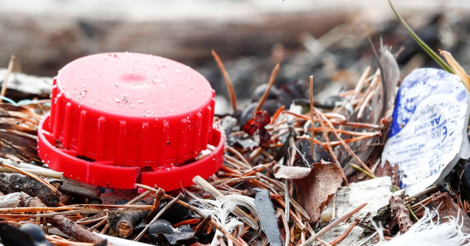 Mye plast, mikroplast og skrot dukker opp i strandkanten rundt om i hele landet. Her fra Bygdøy i Oslo Foto: Terje Pedersen / NTB scanpix