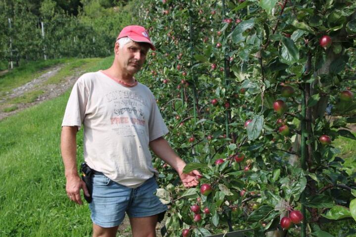 Har trua: Terje Fosshagen ser lyst på mulighetene for å levere mer norske epler. Nå er det noen uker med godvær som skal til for å sikre årets høst.