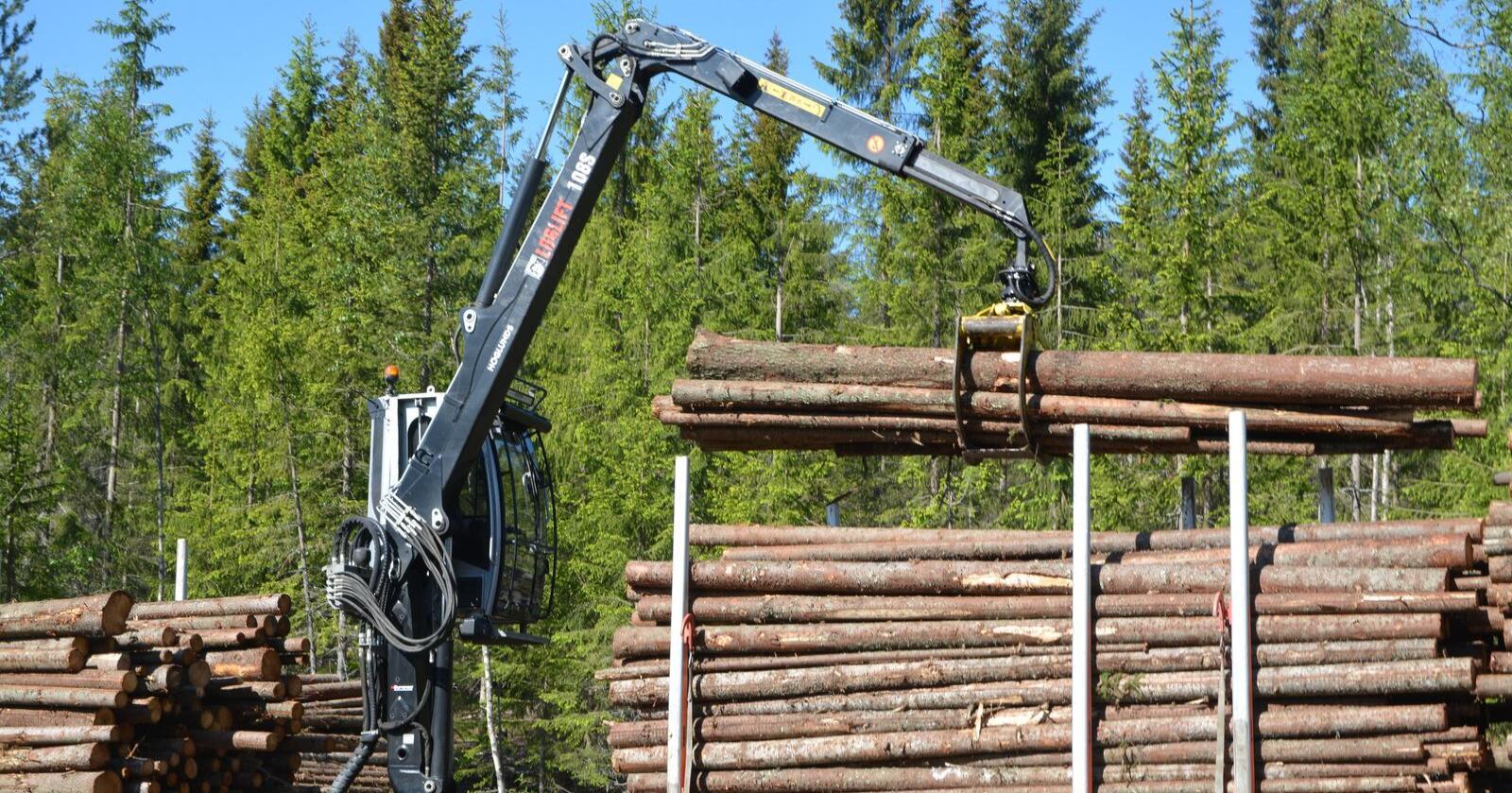 Har troen: Generalsekretær Per Skorge i Skogeierforbundet mener manko på et nytt klimaforlik ikke vil ramme skognæringas klimasatsinger i særlig grad.