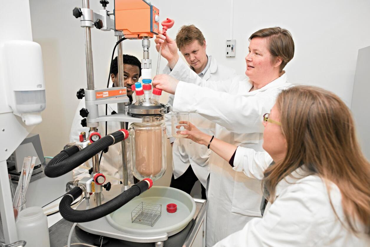 Forskere: Vi som forsker på ressursutnyttelse i mat er opptat av at mer av laksen og kyllingen kan ende som menneskemat, skriver kronikkforfatterne. Foto: Jon-Are Berg-Jacobsen / Nofima