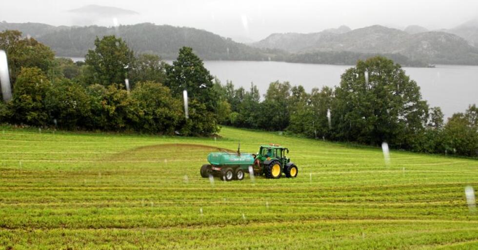 Klimatiltak: Betre graskvalitet, redusert jordpakking og utfasing av fossil energibruk er blant klimatiltaka som bondeorganisasjonane føreslår. Foto: Bjarne Bekkeheien Aase