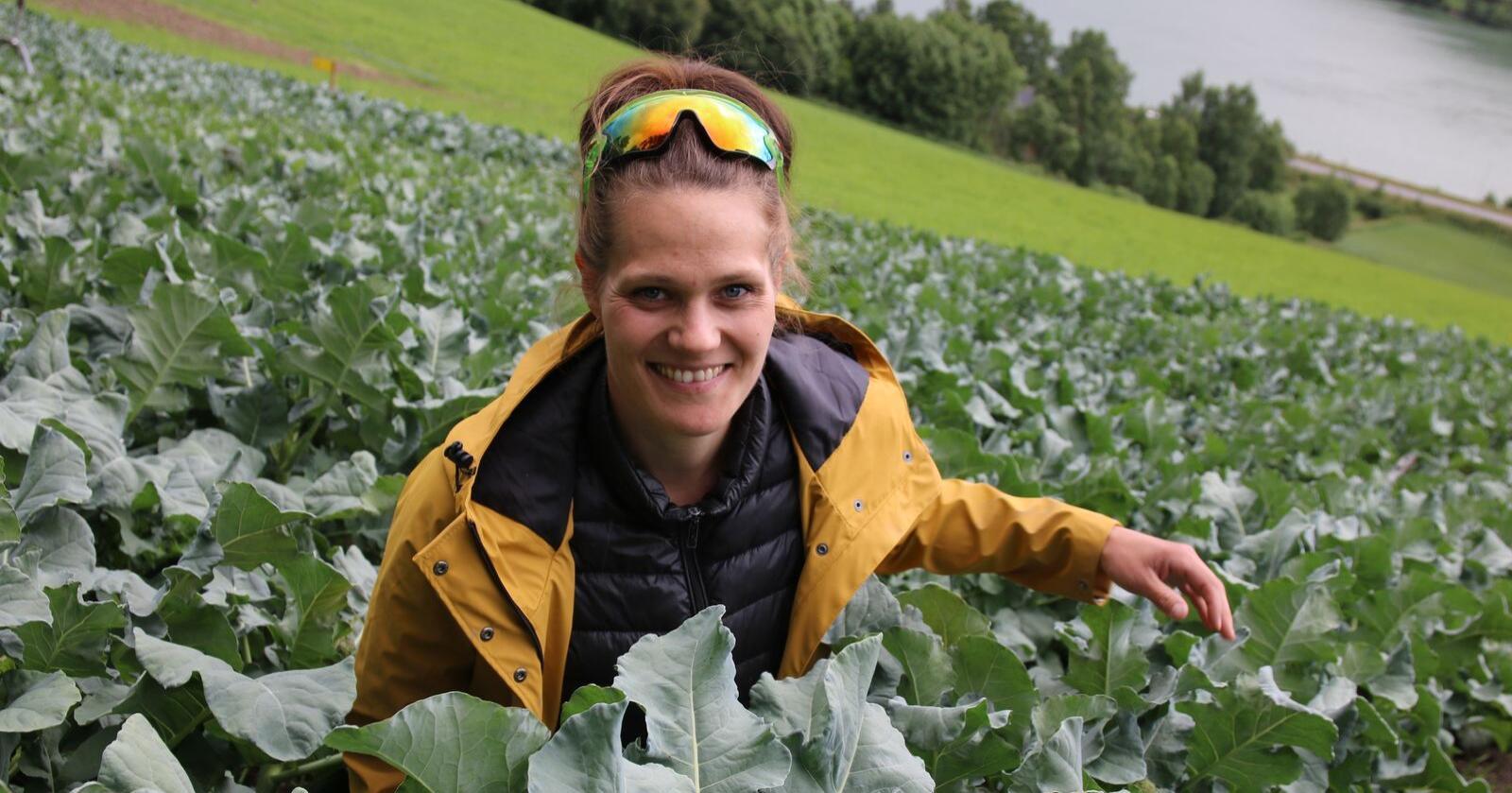 Lokale grønnsaker: Ida Gillebo dyrker grønnsaker for lokalmarkedet, og med jorder som ligger solvendt med Gudbrandsdalslågen nedenfor ligger forholdene godt til rette. Foto: Lars Olav Haug