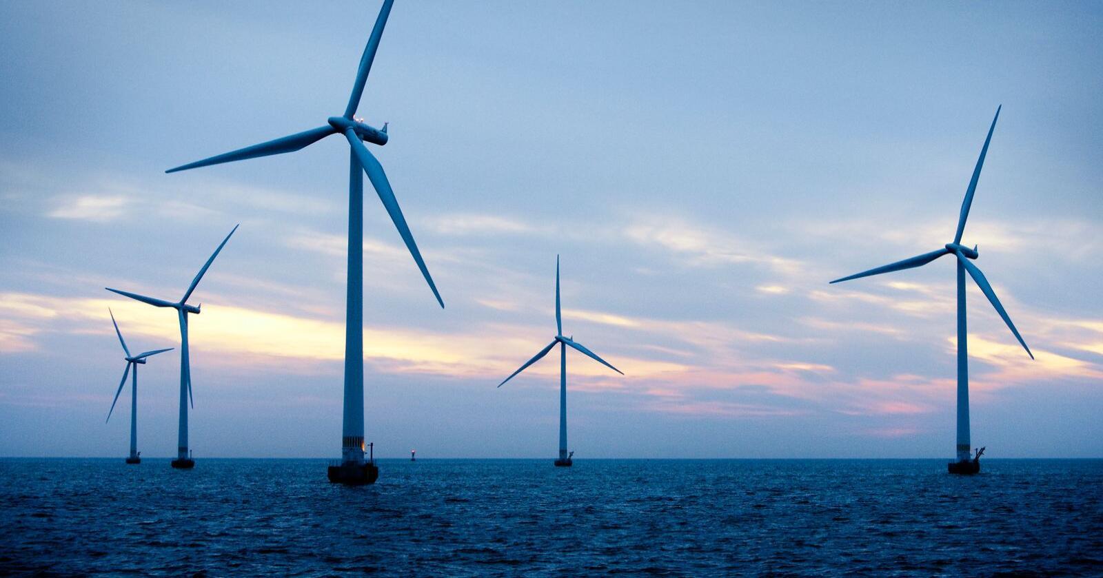 Vindkraft til havs kan bli en betydelig næring.  Foto: Ty Stange / Ritzau Scanpix / NTB
