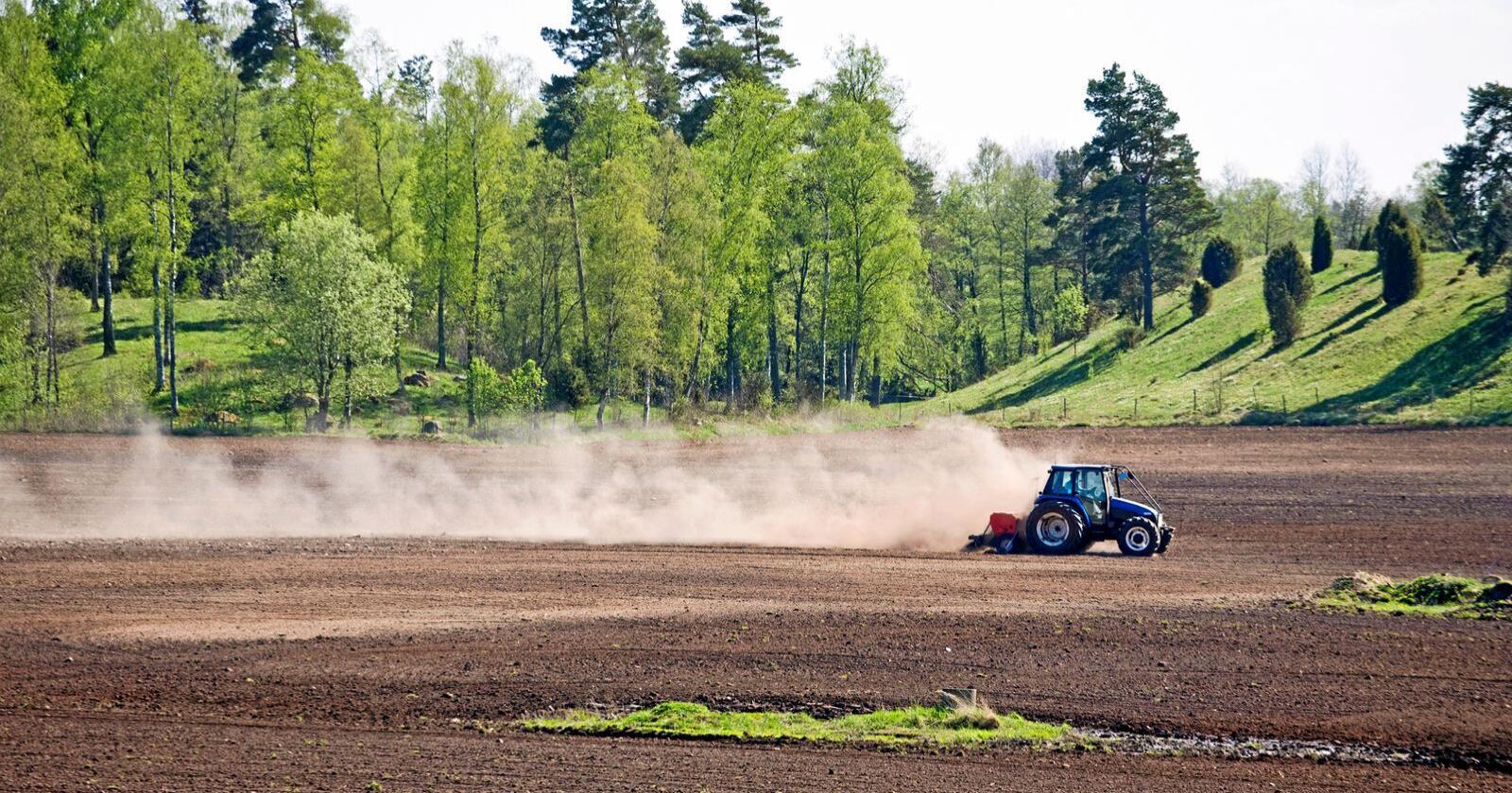 Vi ser fram til å følge med på klimaarbeidet i landbruket og er sikre på at målene om å kutte 5 millioner tonn CO2-ekvivalenter vil nås innen 2030, skriver Guro Angell Gimse. Foto: Mostphotos
