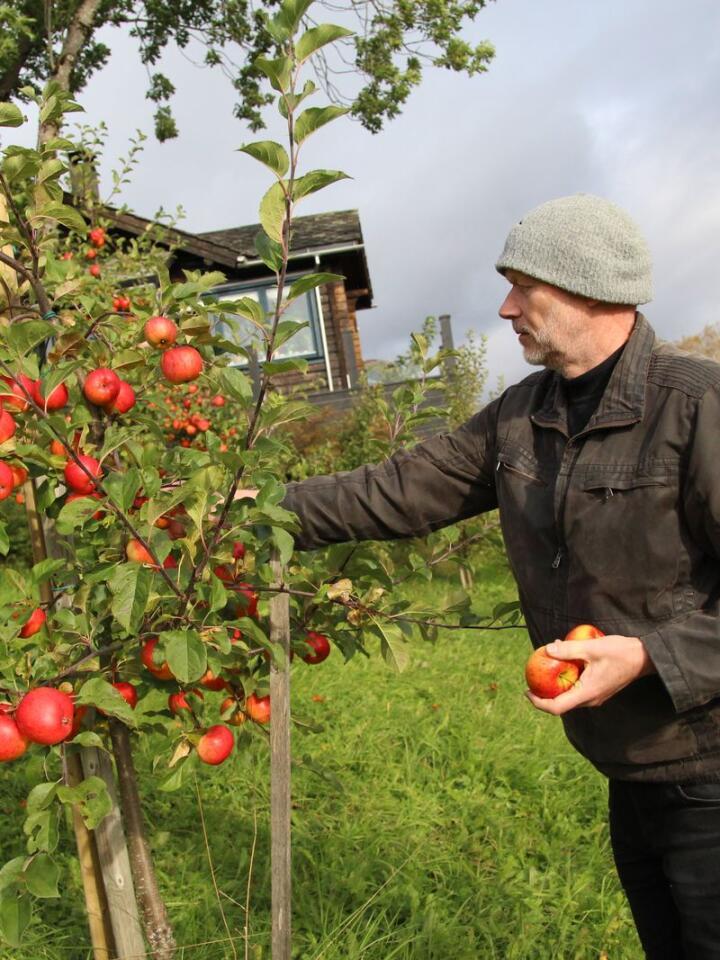 Knut Finne er driver av en abonnementstjeneste på økologisk frukt og grønt. Annen hver uke leverer han varer til 160 private kunder, i tillegg til butikker og restauranter.