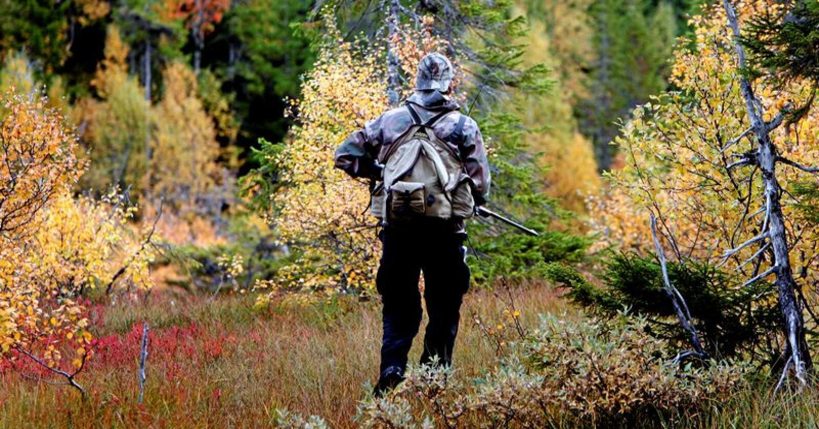 Andelen kvinnelige jegere i Norge øker stadig. I fjor økte andelen med 4,7 prosent, mens den økte med 1,5 prosent for menn. Totalt er det over 509.000 registrerte jegere i Norge. Illustrasjonsfoto: Gorm Kallestad / NTB scanpix