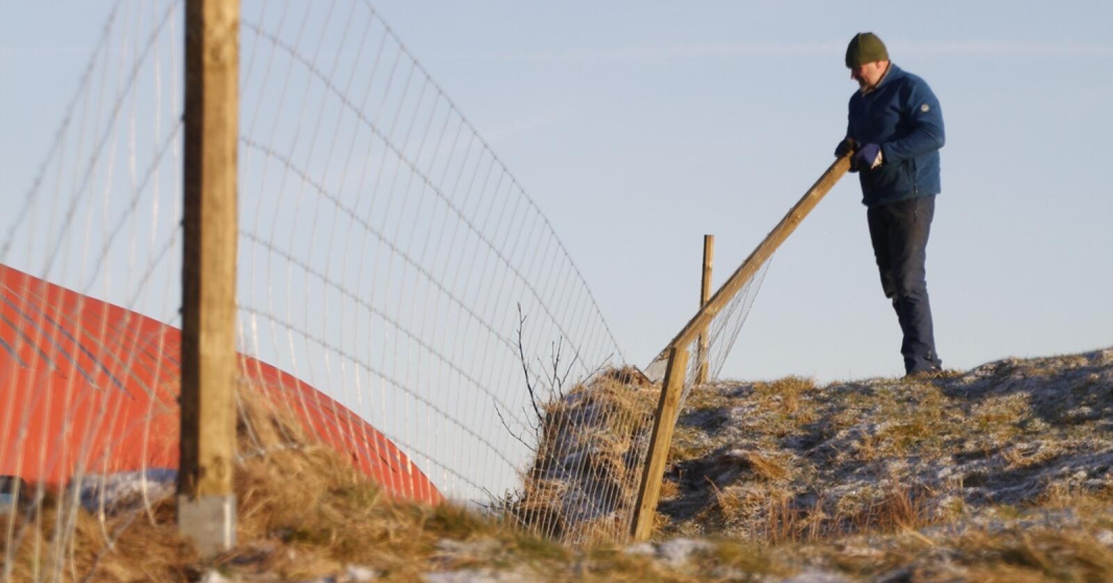 HENGSLA: High tensile-gjerdet er hengsla og kan leggjast på bakken. Foto: HT Gjerde