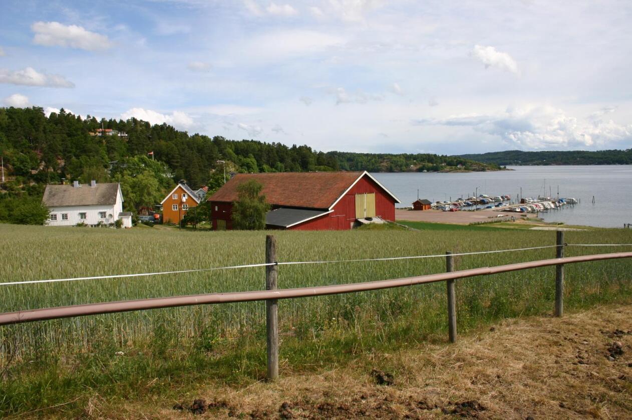 Fra denne helgen trådte flere av Jon Georg Dales endringer i eiendomsreguleringer i kraft. Bildet er fra Vestfold. Foto: Georg Solberg
