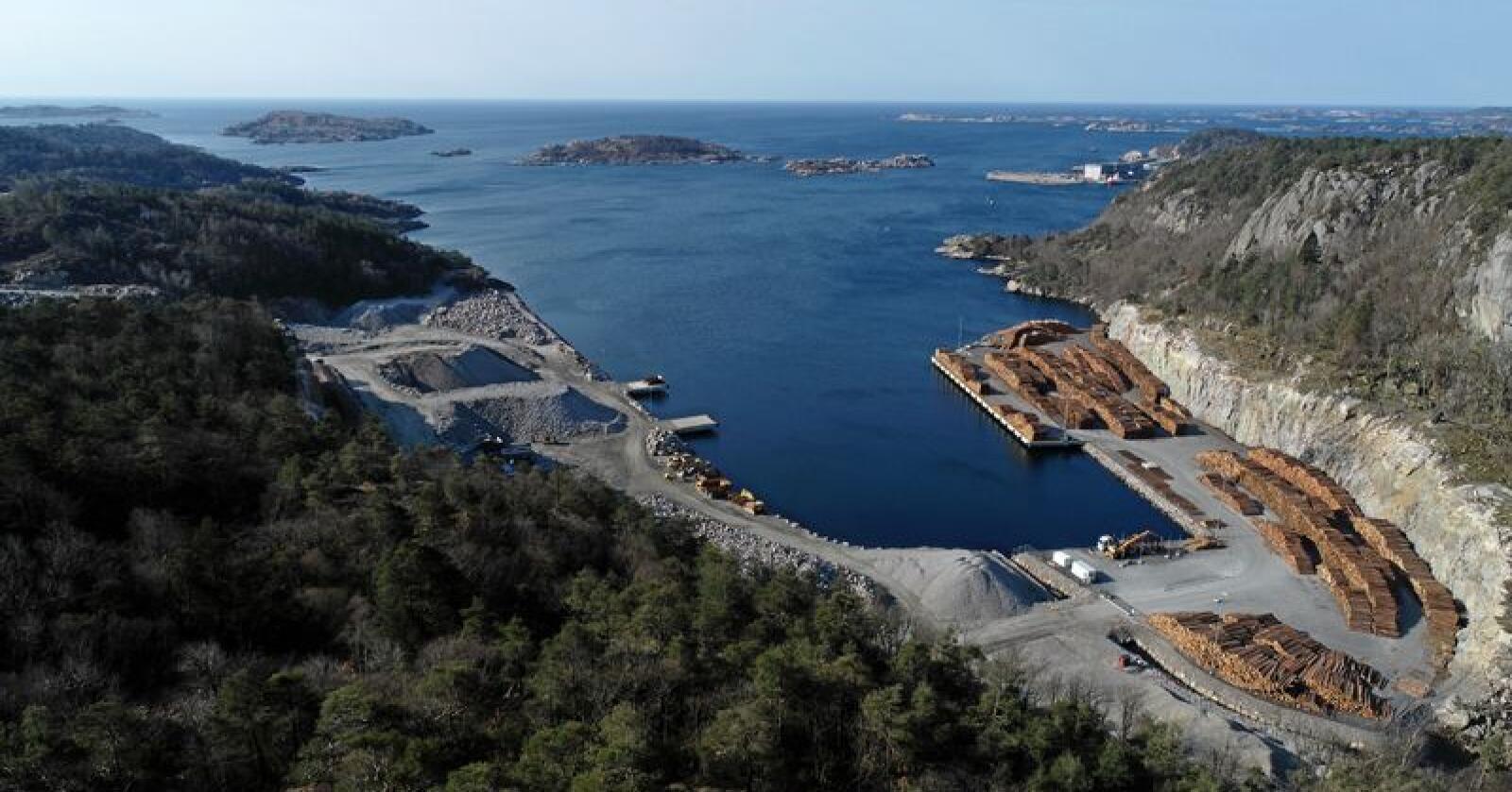 Regjeringen har brukt betydelige summer på tømmerkaier de siste årene. Foto: TT Anlegg