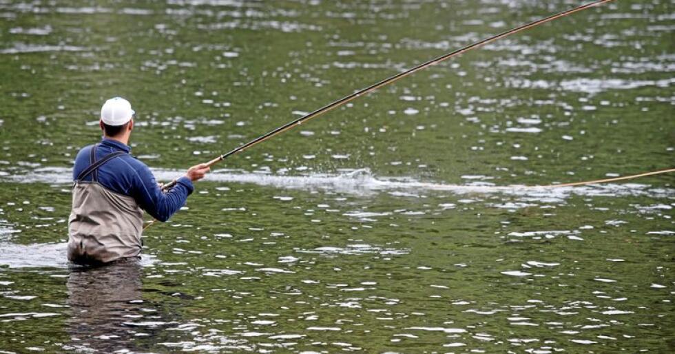Laks: Mer enn 100 elver er stengt for fiske og det er strenge restriksjoner i mange andre. Foto: Terje Bendiksby/NTB scanpix