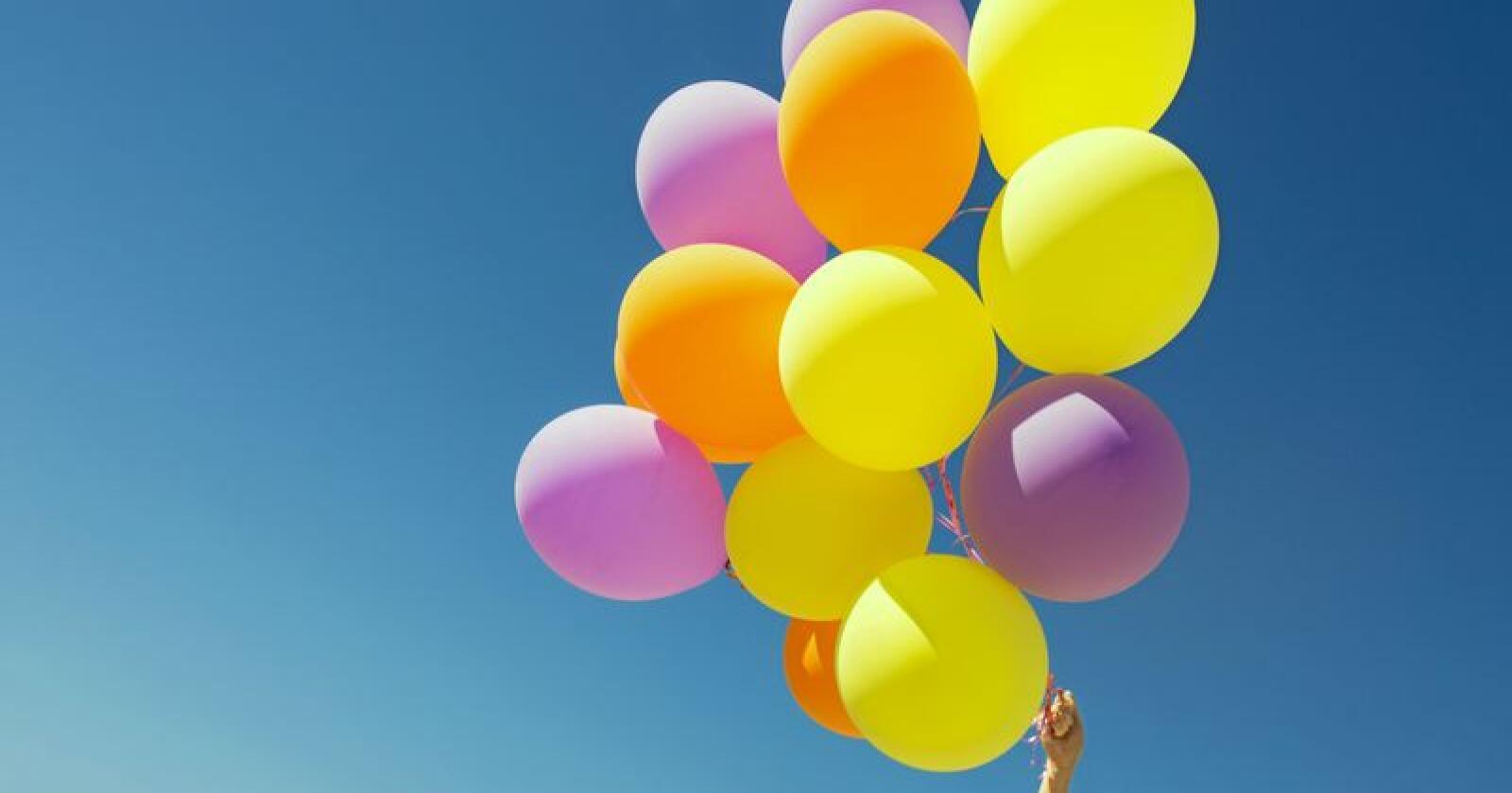 Ballonger kan gjøre skade på dyr som forsøker å svelge dem, det fikk en bonde i Skottland nylig oppleve. Foto: Lev Dolgachov / Mostphotos